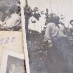 1920 nelle vigne